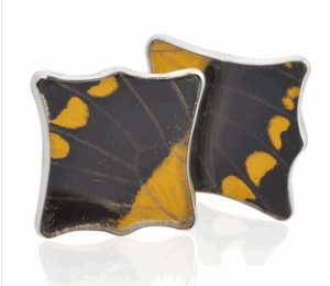 Aymara Yellow Lion's Paw Butterfly Cufflinks