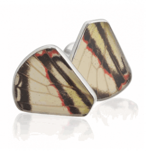 Aymara Convex Tiger Butterfly Cufflinks