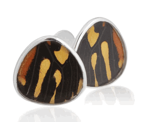 Aymara Rain Drop Mirage Butterfly Cufflinks