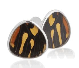 Aymara Rain Drop Mirage Butterfly Cufflinks