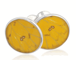 Aymara Circle Fields of Gold Butterfly Cufflinks