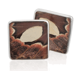 Aymara Square Twilight Butterfly Cufflinks